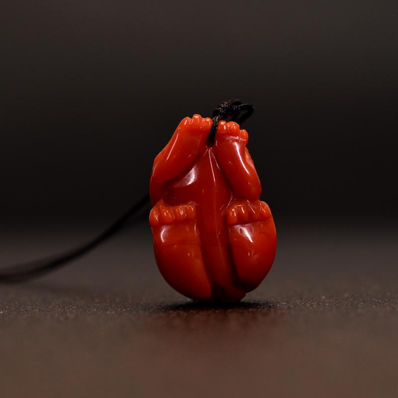 鸿木斋 南红吊坠 凉山料天然柿子红 南红雕刻貔貅 孤品N3596 (4).JPG